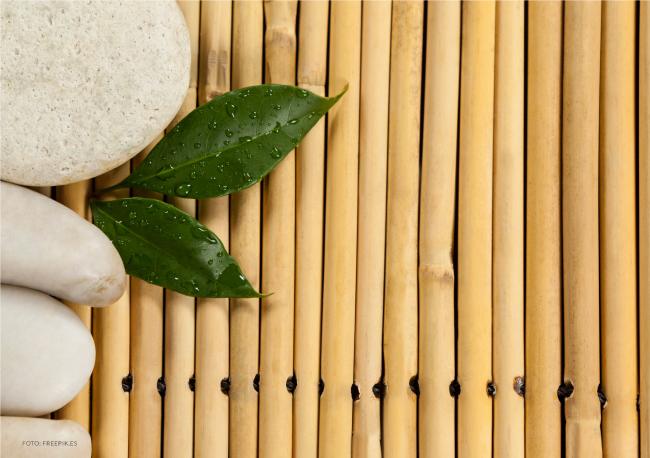 Terapias Naturales: naturaleza y salud: